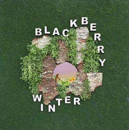 BlackberryWinter1