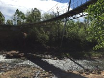 Swamp Rabbit Trail 3