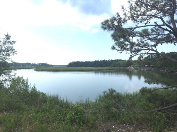 Water view - Spanish Moss Trail