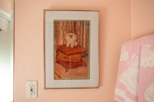 Vintage Kitsch Poodle photo