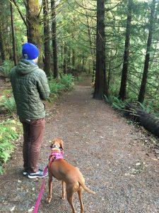 Travel Astoria Oregon