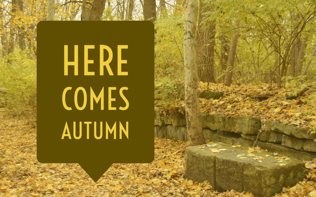 Here Comes Autumn – 10.4.16