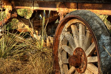 Wagon Wheel #2