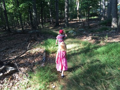A walk in the woods with the kids