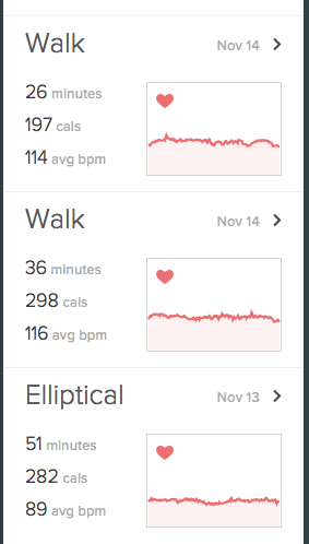 FitBit Exercise Log