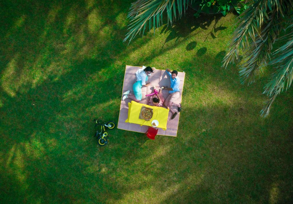 picture of people relaxing on a mat, having a picnic. arial view. the importance of setting holistic goals as an entrepreneur