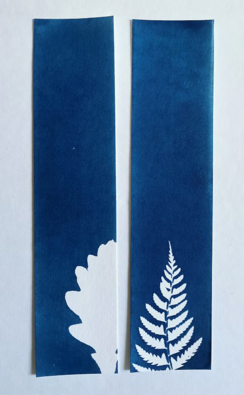 bookmarks printing with the ancient technique of cyanotype or printing with the sun