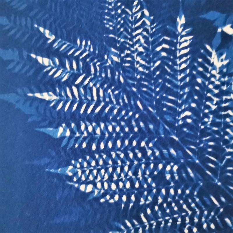 print-cyanotype-Jamila-Baroni-Jacarandà leaves