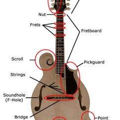 Guitar Parts Diagram Sky Tv Wiring Mandolin Instruction - Junior Appalachian Musicians