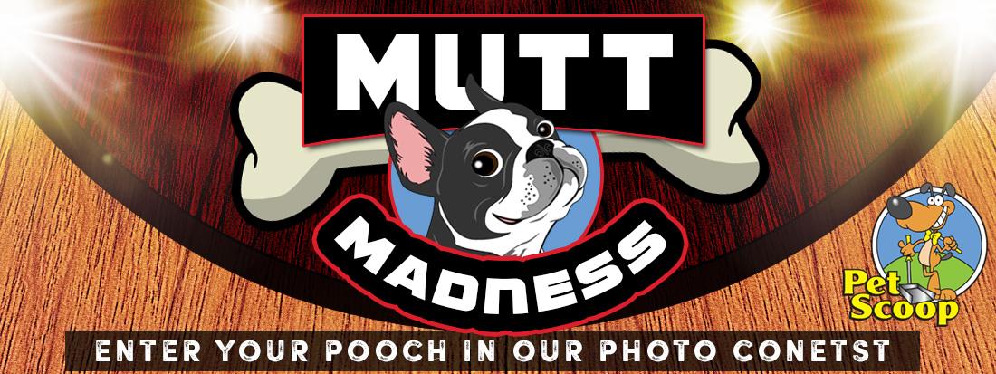 mutt-madness-1100x413