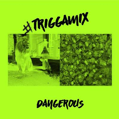 trey songz dangerous triggamix