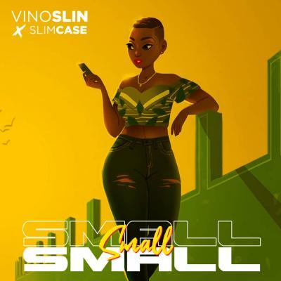 Vinoslin X Slimcase - Small Small