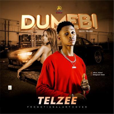 TelZee - Dumebi