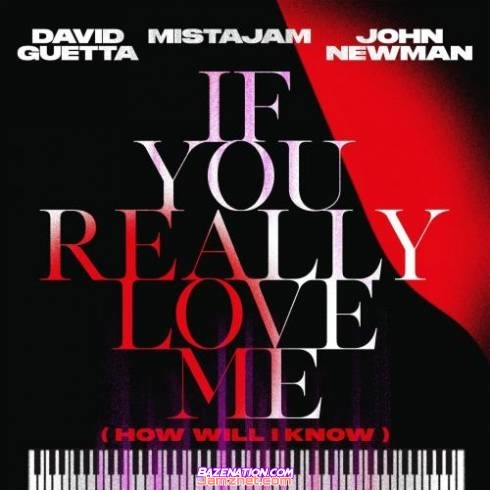 David Guetta & MistaJam – If You Really Love Me (How Will I Know) (David Guetta Future Rave Remix) MP3 DOWNLOAD