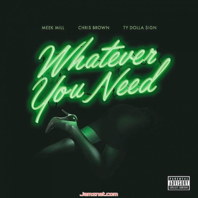 T.Y. What You Need MP3 DOWNLOAD