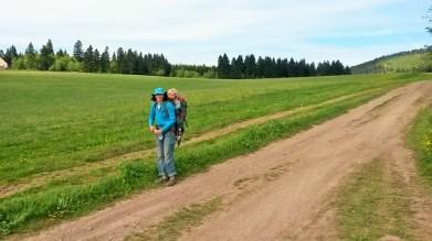 Wandern am Knüllfeld