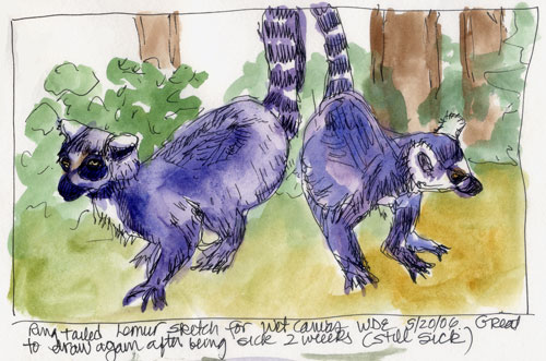 Lemurs from the Wet Canvas WDE