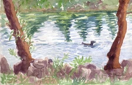 Oregon-lake