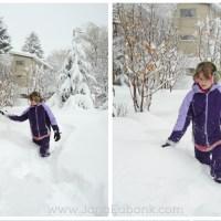 Winter Cricut Projects