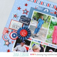 Stashbuster: 4th of July Family Picnic
