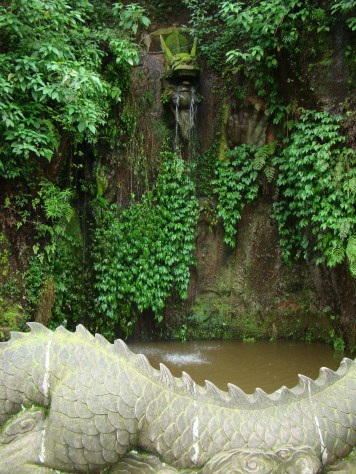 Dragon pond!