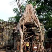 The Jungle is Reclaiming Beng Melea Temple