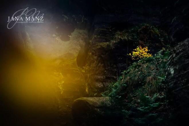Naturfotografie und Landschaftsfotografie in der Sächischen Schweiz, Elbsandsteingebirge. Der Gamrig Vorlage und Motiv Caspar David Friedrich bekanntesten Werk: Der Wanderer über dem Nebelmeer. Bastei, Böhmische Schweiz, Elbsandsteingebirge, Herbst, Sächsische Schweiz, Tyssaer Wände