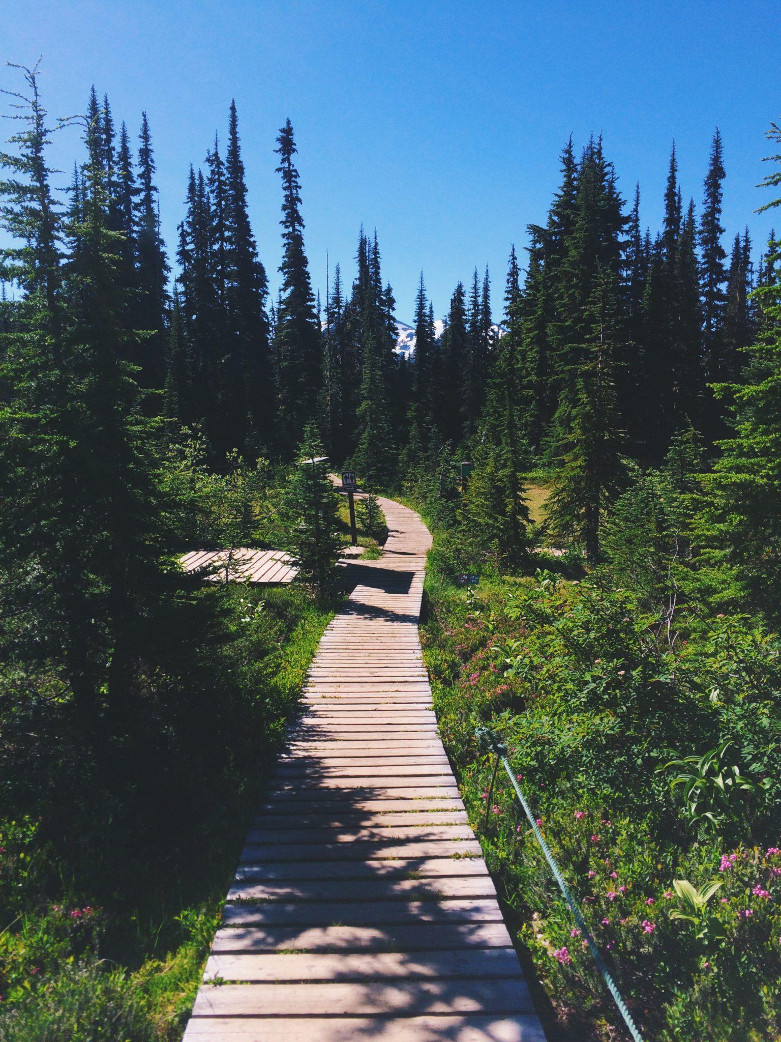 jana meerman panorama ridge
