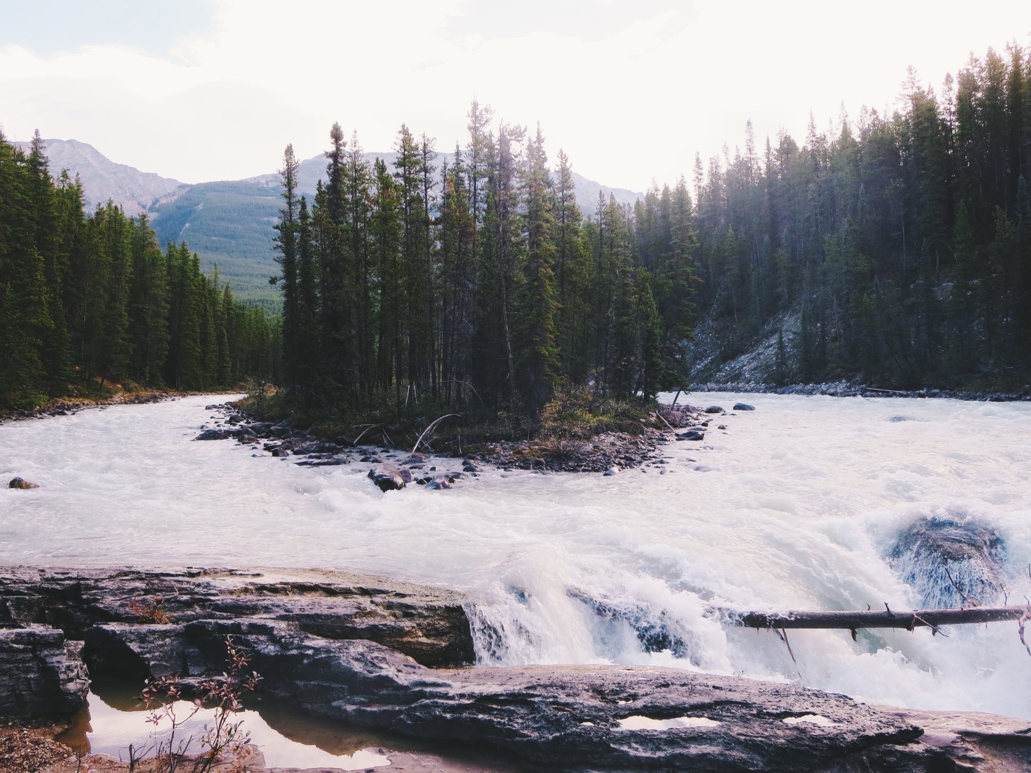 jana meerman sunwapta falls
