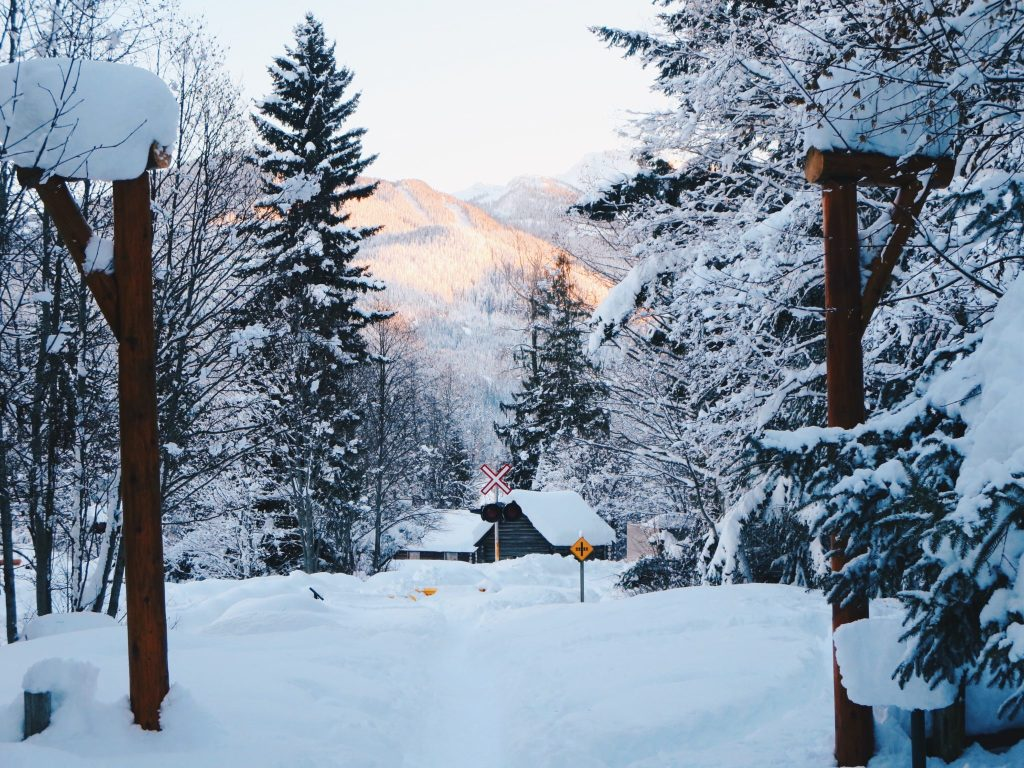 Winter Holiday Guide: Whistler, BC