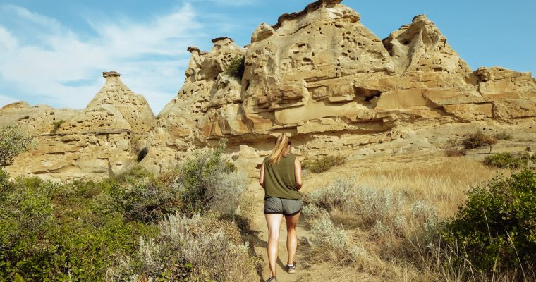 A Guide to Writing-on-Stone Provincial Park