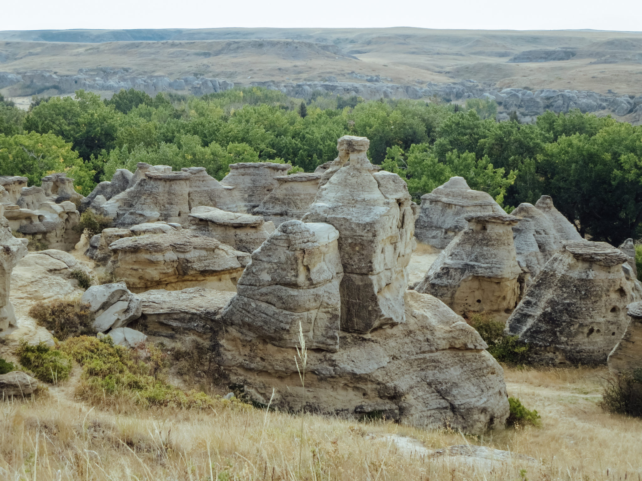 jana meermaan writing-on-stone provincial park-28