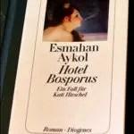 """Gelesen: """"Hotel Bosporus"""" von Esmahan Aykol"""