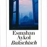 """Gelesen: """"Bakschisch"""" von Esmahan Aykol"""