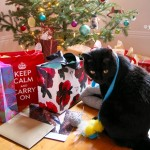 My Christmas presents 2015