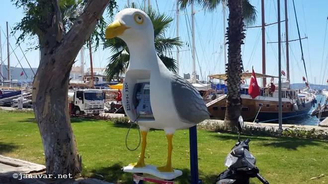 janavar-bodrum-turkey-travel-summer-2016-7