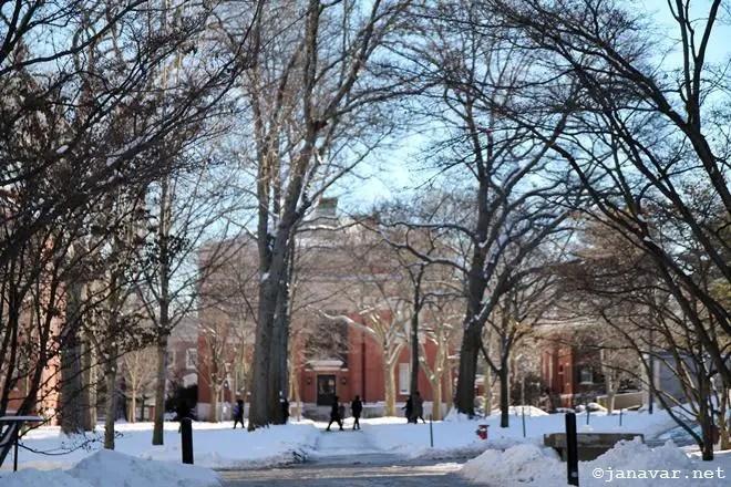 Boston Winter January 2017