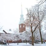 20 Reasons to Like Winter
