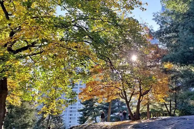 Travel: Why I love Manhattan   janavar