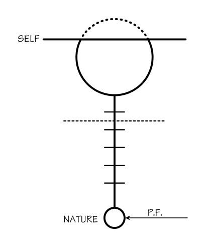 Diagram # 028 illustration