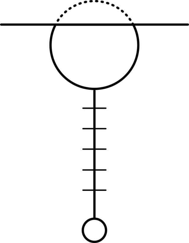 Diagram 1 The Nervous System
