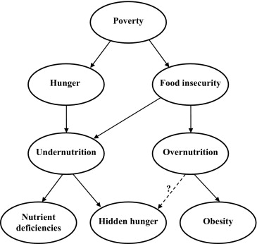 Poverty, Obesity, and Malnutrition: An International