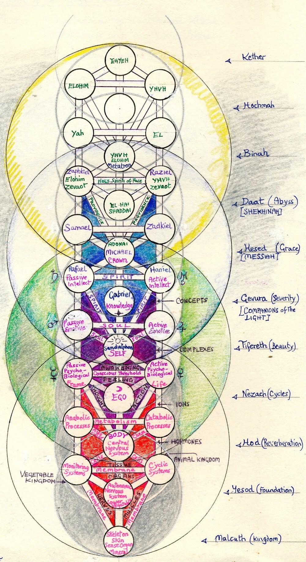 medium resolution of chakra system diagram of