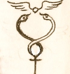 caduceus wings
