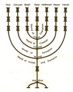 menorah, halevi collection