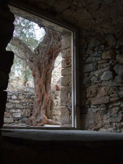 a window in crete