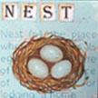 nestt