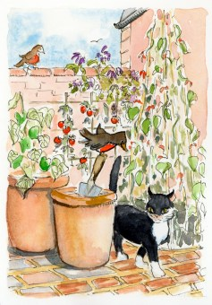 Cat and Robins