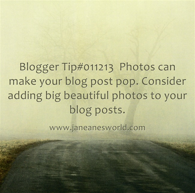 www.janeanesworld.com add photos to our blog