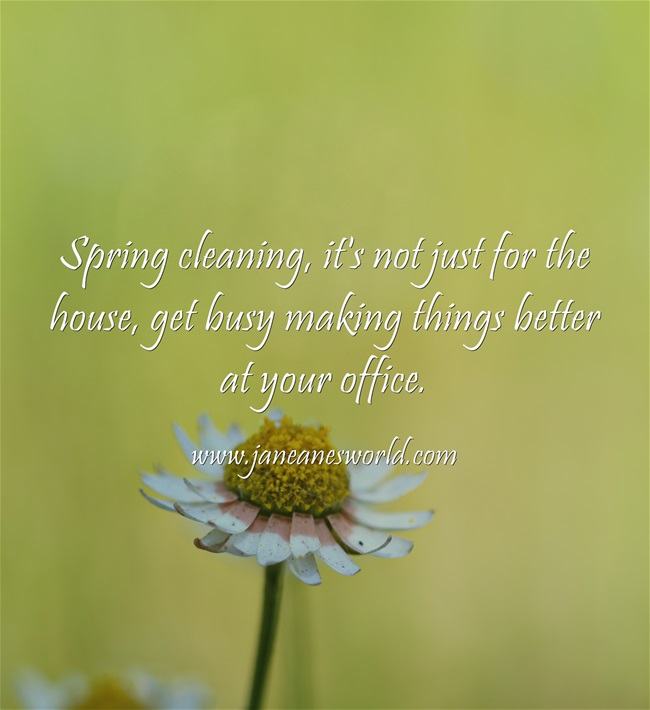 spring clean at your business www.janeanesworld.com